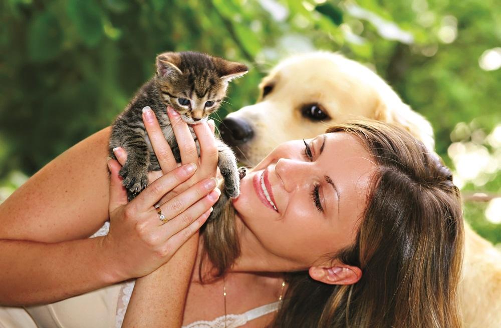 trucos-de-nutricion-para-mascotas