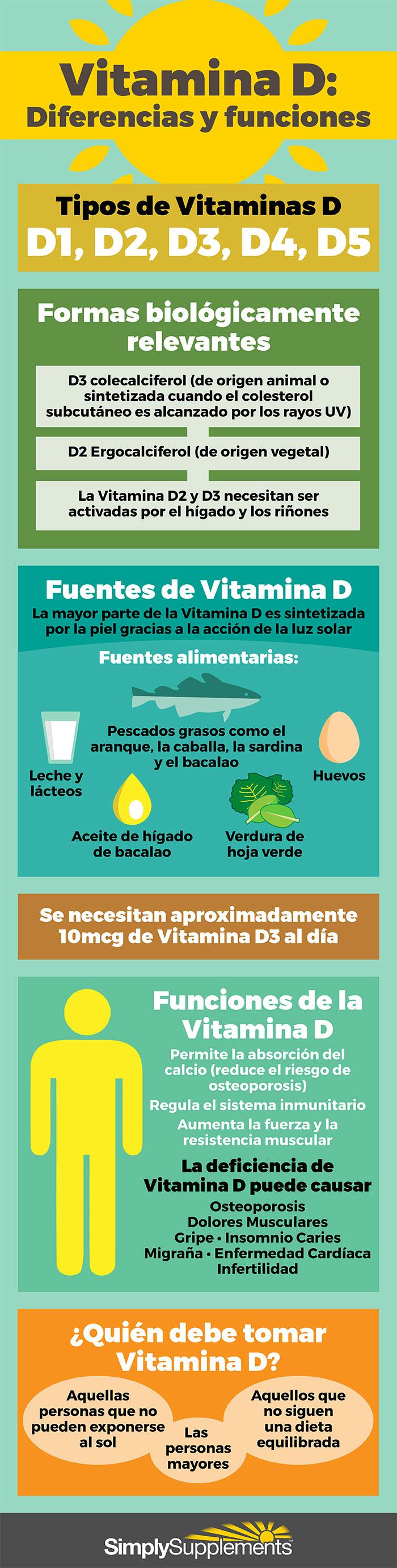 infografia-vitamina-d-diferencias-y-funciones